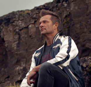 Pop-rock/Folk DAVID HALLYDAY LE TEMPS D'UN CONCERT LILLE