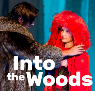 Comédie musicale INTO THE WOODS MASSY