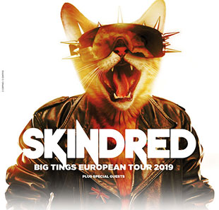 Hard-rock/Métal SKINDRED + BLOOD COMMAND PARIS