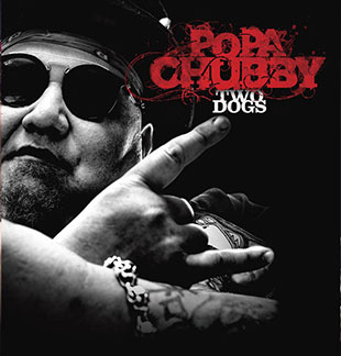 Pop-rock/Folk POPA CHUBBY VILLEURBANNE