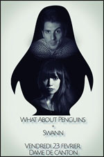 WHAT ABOUT PENGUINS + SWANN