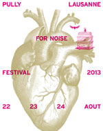 PULLY FOR NOISE 2013 - PASS 1 JOUR